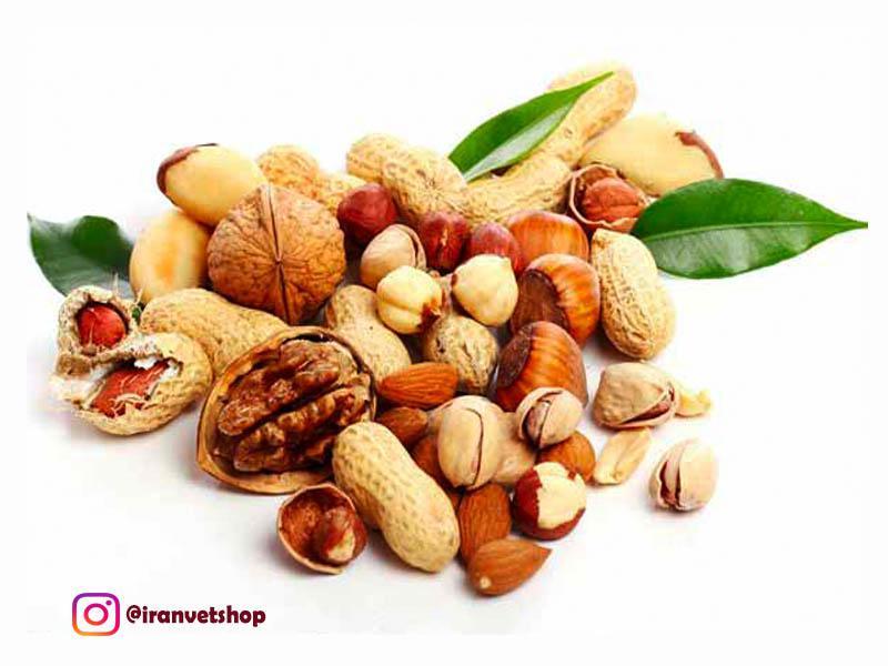 فروشگاه ایران وت-غذای آجیلی پرندگان-غذای طوطی-غذای کاسکو