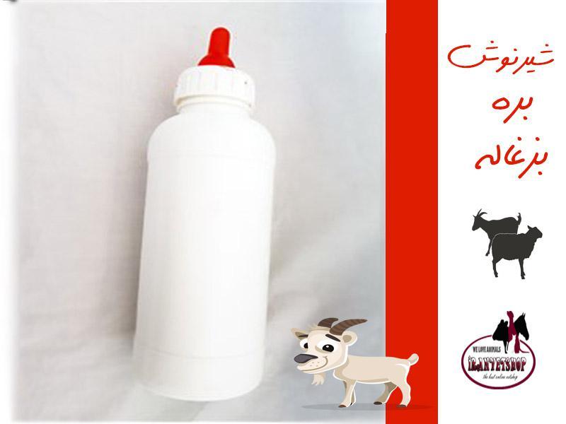 شیرنوش بره-شیرنوش بزغاله-شیرنوش آهو-شیرنوش کوچک